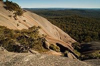 Bald Rock, Tenterfield, New South Wales, Australia