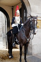 Royal Horse Guard, of House Hold Cavalry, Whitehall,London UK