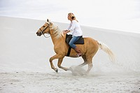 Brown horse, blond girl, beach, dunes, sand