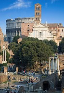 Italy, Rome, Roman Forum, Santa Francesca Romana in background
