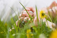 Germany, Bavaria, Munich, Couple lying in meadow, holding hands, close_up