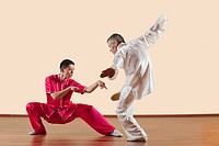 Kung Fu, Tanglangquan, Duilian, Praying Mantis Style, Two men doing kung_fu moves