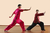 Kung Fu, Changquan, Gongbu, Long Fist Style, Kung fu instructor and boy 10_11
