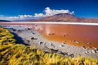 Bolivia, Southern Altiplano, Laguna Colorada  The dramatic other world landscape of the Laguna Coloroda otherwise know as the coloured lake