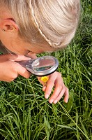 Germany, Bavaria,Girl 10_11 examining flowers through magnifying glass, elevated view, close_up