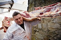 A man delivering a side of locally slaughtered welsh beef to a butchers in Newport Pembrokeshire Wales UK