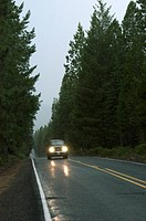 Driving On A Rainy Highway Through The Forest