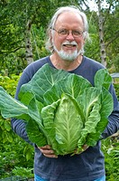 Proud gardener with a fine Sugarloaf cabbage
