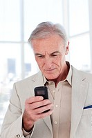 Concentrated senior businessman sending a text in the office