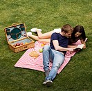 couple on the meadow, picnic