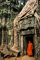 NR Angkor Wat with monk