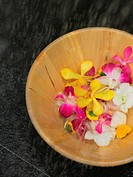 Close_up of flowers in a bowl