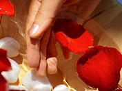 Close_up of a woman's hand dipped in a bowl of rose petals