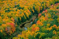 High angle view of a stream, Porcupine Mountains, Upper Peninsula, Michigan, USA