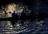 rowing team shown in dusk on lake