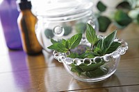 Herbs in glass bowl, differential focus