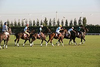 Horse racing,China