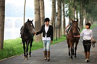 Young couple walking side by side with two horses
