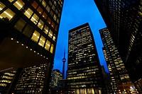 TD Center, Toronto, Ontario