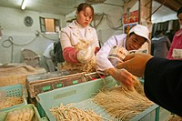 noodle shop, fresh noodles, sales, market hall, paying with Yuan note, cash