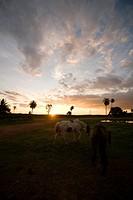 Landscape, Sunset, Aquidauana, Mato Grosso do Sul, Brazil