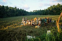 Rice harvesting, Rizal, Philippines