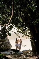Beach, Tree, Trindade, Rio de Janeiro, Brazil