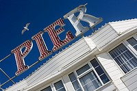 England, City of Brighton and Hove, Brighton, A seagull hovering above signage reading PIER on Brighton Pier