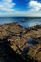 England, Tyne and Wear, Cullercoats, Looking out across a rocky coastline towards the expanse of the North Sea