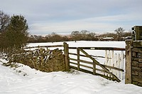 England, North Yorkshire, Goathland, Gate and dry stone walling in winter.