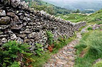 England, Cumbria, Grasmere, Path from Easedale Tarn to Grasmere.