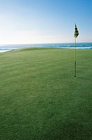 Golf putting green with flag in hole with ocean in background