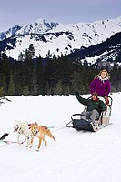 Guided dog mushing tour in Moose Meadows at Alyeska Resort near Girdwood in Southcentral Alaska