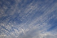 Abstract blue sky with ripple puffball altocumulus clouds
