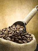 Roasted coffee beans with scoop in yute sack
