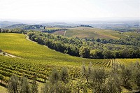 europe, italy, tuscany, chianti, view from the brolio castle