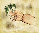 A babys hand holding a sprouting plant