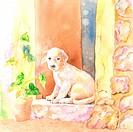 Animal, Watercolor painting of a dog crouching on window sill