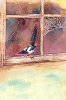 Animal, Watercolor painting of a bird standing on a broken window