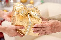 Domestic Life, Close_up of hands holding gift together