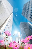 Lohas, Environmental Conservation, Digitally generated image of skyscraper with flowers