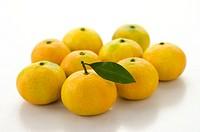Sugar Oranges