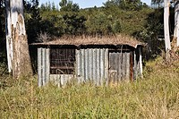 Corrugated tin shack in rural setting  Midlands, KwaZulu Natal, South Africa