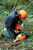 Young male forestry worker pouring chain oil into the oil tank of a chainsaw, Wales