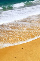 Ocean wave advancing on a yellow sandy beach