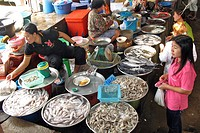 FISH SELLER SHRIMP, SQUID AND BONITO IN THE BANG SAPHAN MARKET, THAILAND