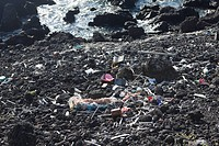 Rubbish comes with the High Tide, Pico Island, Azores, Portugal