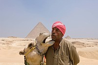 Camel Driver in Front of Pyramid of Cheops, Cairo, Egypt