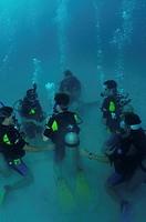 Scuba dive course