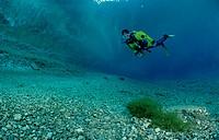 Scuba Diver in a mountain lake, Steiermark Gruener See, Austria